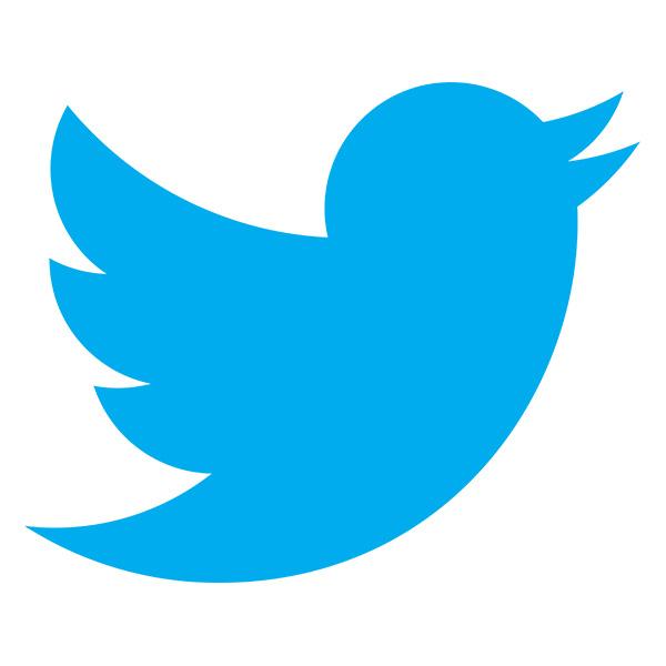 pixelize-twitter-logo